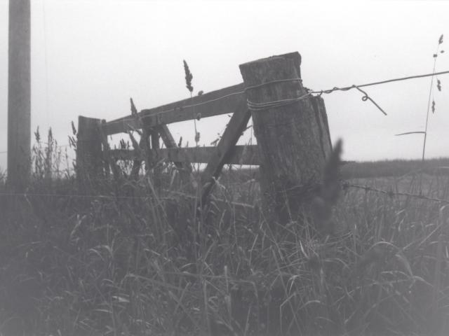 greyfield