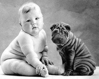 baby_dog