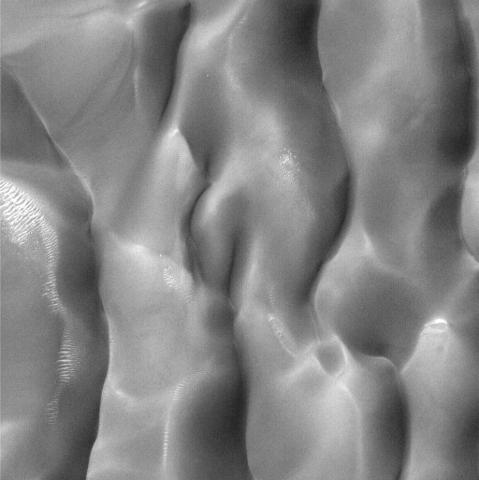 dunes_bodies