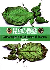 insect_leaf